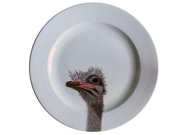 ostrich-1024x768